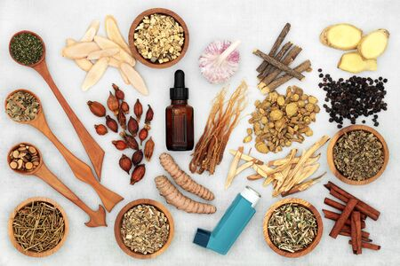 Food and medicine to treat asthma and respiratory diseases with Chinese herbal medicine, essential oil and ventilator. Zdjęcie Seryjne
