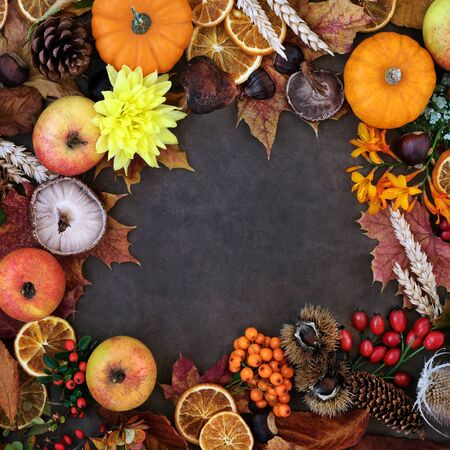 Autumn background border with food, flora and fauna on lokta background. Top view. Harvest festival theme.  写真素材