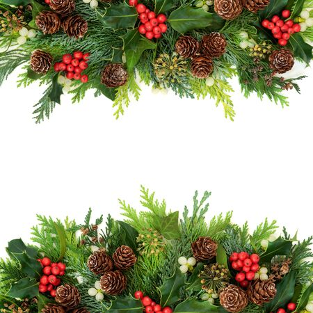 Traditional winter Christmas & New Year greenery border with holly, cedar cypress fir, mistletoe, pine cones & ivy on white background. Natural flora for the holiday season. Banque d'images