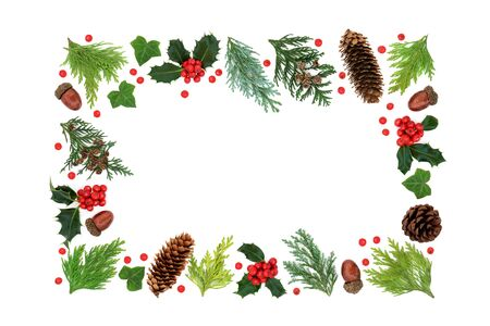 Winter solstice, Christmas & New Year greenery floral border with holly, cedar cypress firs, acorns, ivy & loose berries on white background. Festive design element. Flat lay, top view, copy space.