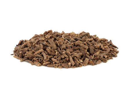 Valerian herb root used in herbal medicine as a tranquilizer & to treat insomnia, anxiety, hypertension, pain relief and is a muscle relaxant, on white background. Valeriana officinalis.