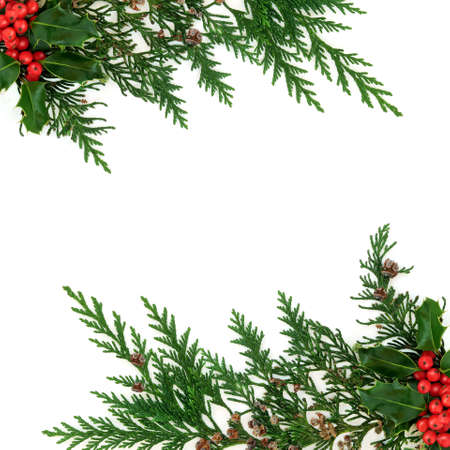 Cedar cypress & holly berry border natural winter decoration on white background. Decorative design for Xmas & New Year festive season. Flat lay, top view, copy space. Фото со стока