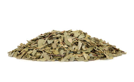 Boldo herb leaves used in herbal medicine for gallstones, rheumatism, bladder infections, gonorrhea, liver disease, is anti bacterial and can reduce anxiety. On white background. Peumus boldo.