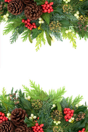 Traditional Christmas winter & New Year background border with holly, ivy, mistletoe, cedar cypress & pine cones on white. Xmas composition of natural flora. Flat lay, top view, copy space. Banque d'images