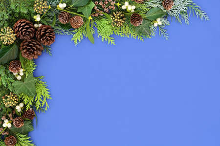 Background border with winter greenery of cedar cypress, juniper fir, mistletoe, ivy & pine cones on blue background. Floral composition for the Xmas & New Year. Flat lay, top view.