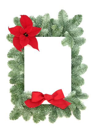 Poinsettia flower  border with snow covered spruce fir & red bow on white background. Festive theme for  winter, Thanksgiving & Christmas. Flat lay, top view, copy space. Zdjęcie Seryjne