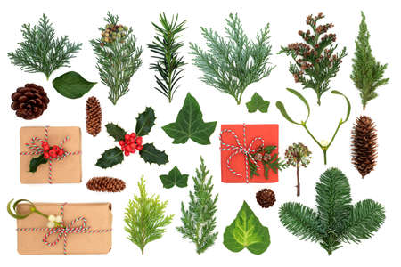 Natural eco friendly Christmas gift boxes with winter holly & greenery of cedar cypress, juniper & spruce  firs with mistletoe, ivy, yew leaves & pine cones. Green theme recycling concept.