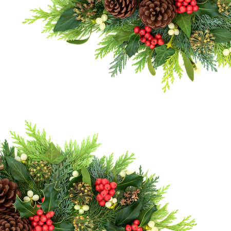 Christmas winter & New Year background border with holly, ivy, mistletoe, cedar cypress & pine cones on white. Xmas composition of traditional flora. Flat lay, top view,copy space.