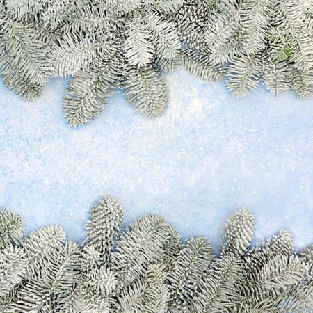 Winter Christmas and New Year snow covered spruce fir border on pastel blue background. Festive composition. Flat lay, top view, copy space. Zdjęcie Seryjne