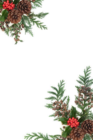 Winter berry holly, cedar cypress leaves & pine cone border on white. Natural festive background for Christmas & New Year. Flat lay, top view, copy space.