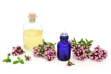 Oregano herb flowers & leaves with essential oil bottles. Used in aromatherapy and herbal medicine. Can ease IBS symptoms, is anti bacterial, anti inflammatory, anti viral & is an anti coagulant.