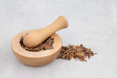Cascara herb bark used in herbal medicine to treat constipation in a wooden mortar with pestle and loose. Rhamnus purshiana. Archivio Fotografico