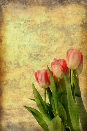 Vintage Tulips Stock Photo