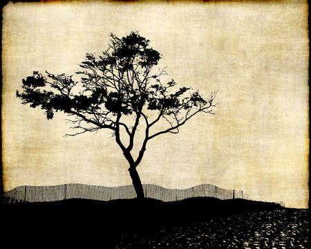 Tree Silhouette On Fabric