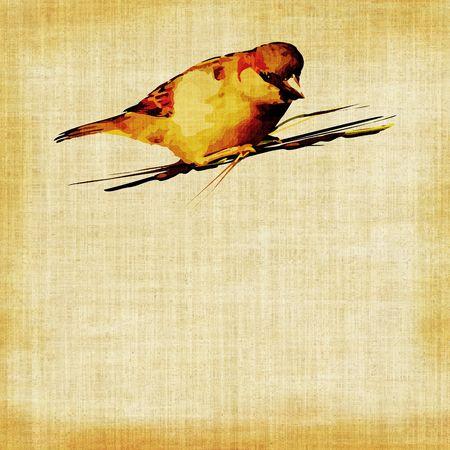 Bird On Tapestry photo