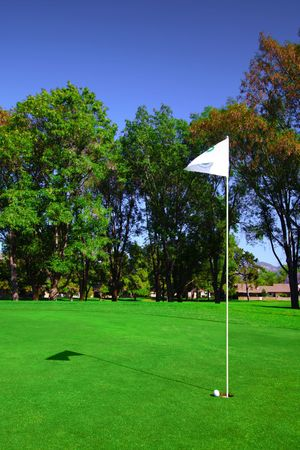 putting green: Flag On Golf Course
