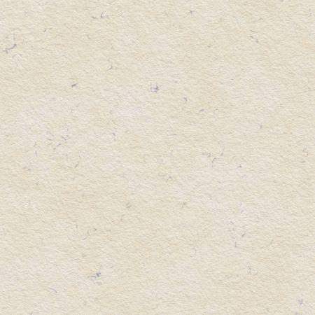 Textured Beige Paper