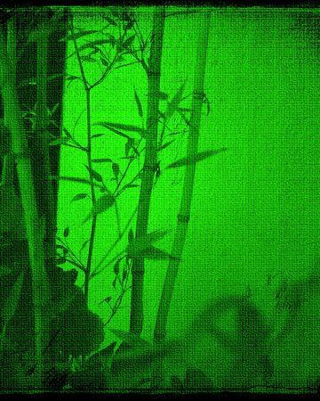 Bamboo Texture Background   photo