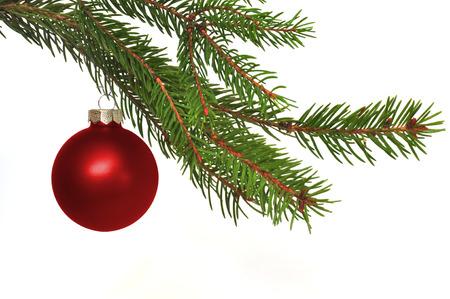 abeto: filial do abeto com esfera do Natal