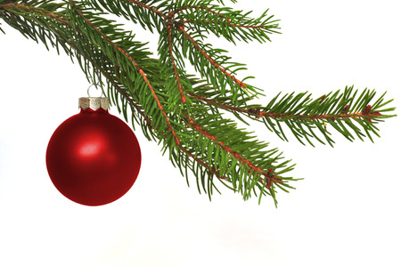 fixed: fir branch with Christmas ball