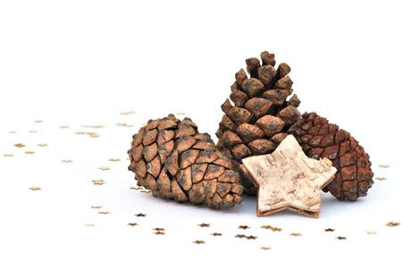 three fir cones on white background photo