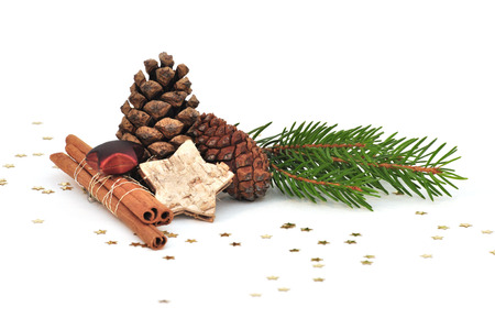 fir cone and branch on white background 版權商用圖片