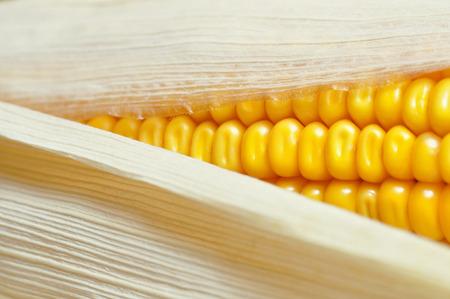 corncob: corncob detail Stock Photo