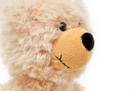 sch: brown teddy bear, looking to the right Stock Photo