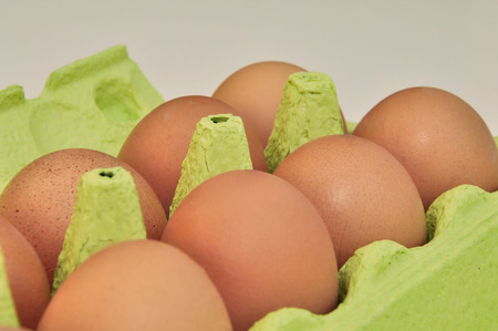 green egg box with 10 eggs photo