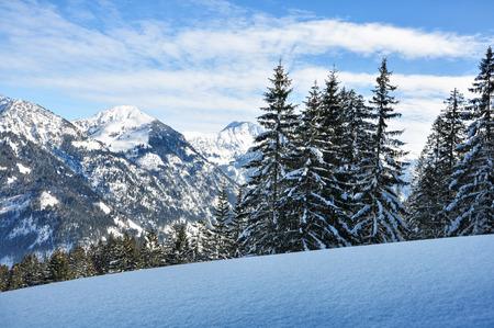 Weiße Winterland, Winterwald Standard-Bild - 32938988