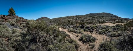 Las Canadas del Teide - national park 版權商用圖片 - 93088390