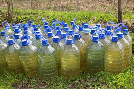 regando plantas: Las botellas de pl�stico con agua para regar las plantas en el jard�n.