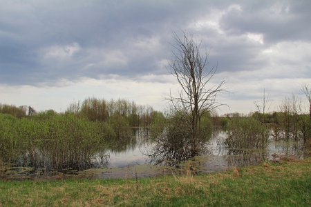 Spill of the river in the fields in early spring in cloudy weather. Russia.