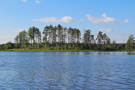 Beautiful nature - forest lake with blue water. Beauty world. Russia.