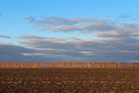 Evening multicolored landscape - plowed brown land on the field in the fall. Russia.