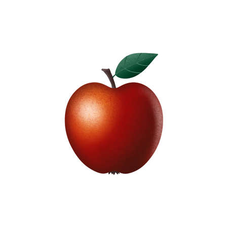 Realistic red apple with texture. Vector illustration isolated on white background. 3D render Ilustrace