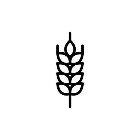 Wheat ears linear icon for business, agriculture, beer, bakery, Gluten free. Black Line illustration.