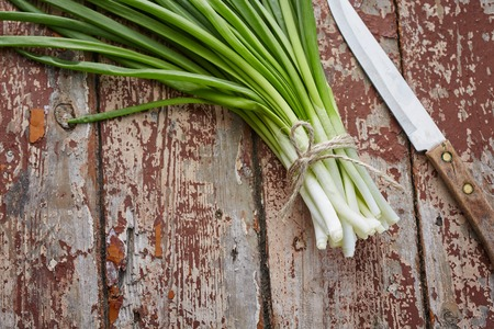 fresh spring onions on dark rustic wood Stock Photo - 37244285