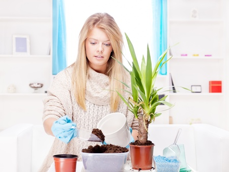 Young blond woman transplant plant in a bigger pot photo