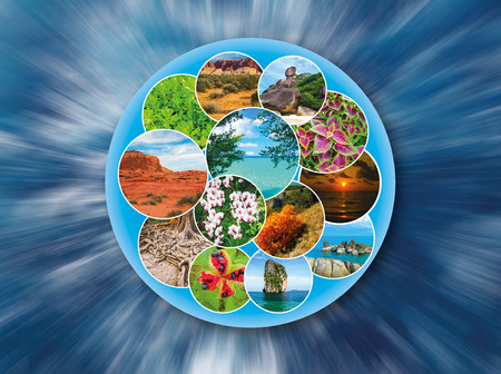 desert ecosystem: The collage on the theme of travel and tourism - views of beautiful planet earth