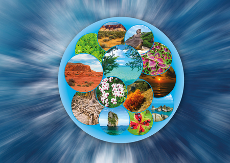 The collage on the theme of travel and tourism - views of beautiful planet earth