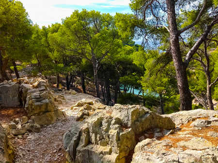 inlet bay: Calanque between Marseille and Cassis, Provence, France