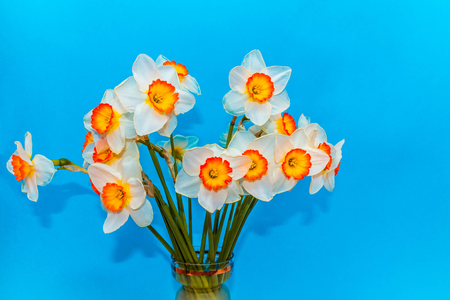 The white narcissus. Spring Flower. Bouquet of narcissus in a vase. Stock Photo