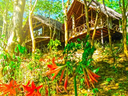 Phi Islands, Thailand - February 04, 2010: The beach houses in Viking Resort