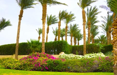 Sharm El Sheikh, Egypt - April 11, 2017: The park Area at Hotel Four Seasons Resort Sharm El Sheikh Editorial