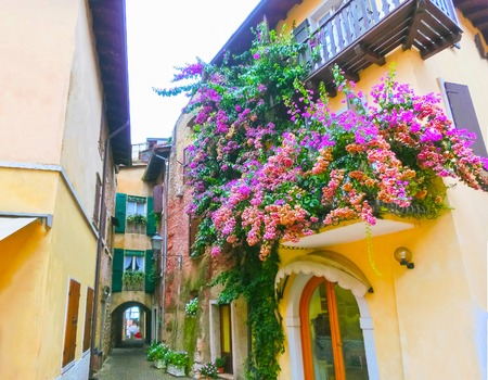 torri: The old town at Torri del Benaco at Garda Lake in Italy