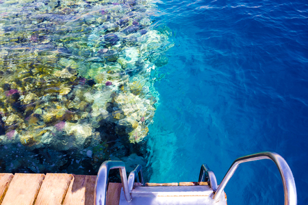 The wooden staircase in the water at the beach at the reef in Sharm el Sheikh, Egypt