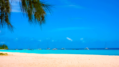 The tropical beach, Barbados, Caribbean