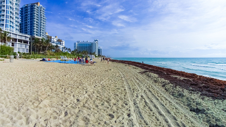Miami Beach in Florida with luxury apartments and green grass near waterway