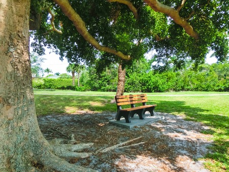 Scenic view of a park and wooden bench in Naples, Florida at USA Stock Photo